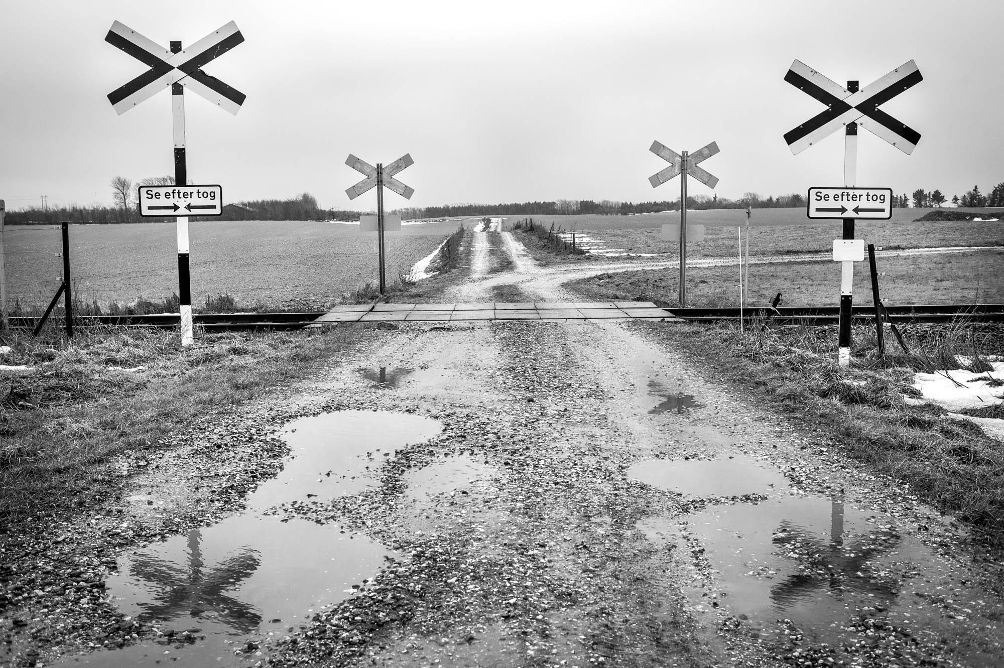 Markvej krydser Thybanen lidt udenfor Thisted.Foto: Martin Damgård